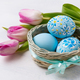 Easter blue painted eggs in thebasket and pink tulips - PhotoDune Item for Sale