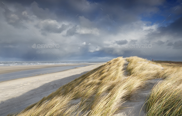 view from sand dune on North sea beach - Stock Photo - Images