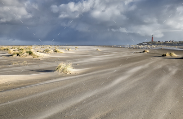 windy day on North sea sand beach - Stock Photo - Images