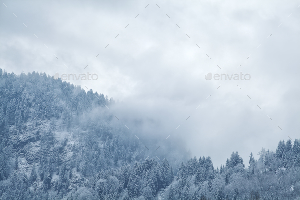 winter fog over mountains - Stock Photo - Images