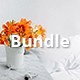 Bundle Google Slides Presentation