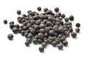 Heap of dried juniper berries - PhotoDune Item for Sale