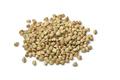 Heap of dried buckwheat seeds - PhotoDune Item for Sale