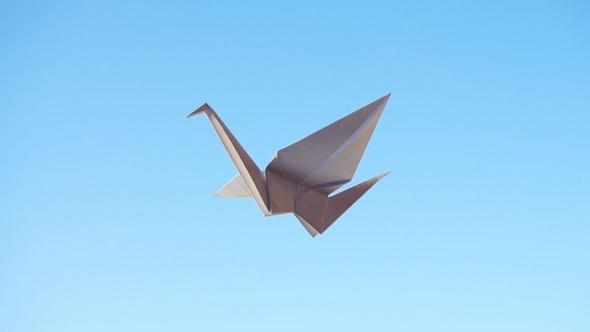 Origami Bird By Yauhenik Videohive
