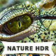 25 Nature HDR Actions - GraphicRiver Item for Sale