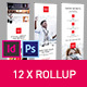 Rollup Stand Banner Display Digital Style 12x InDesign and Photoshop Template - GraphicRiver Item for Sale