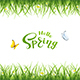 Text Hello Spring with Butterflies and Grass
