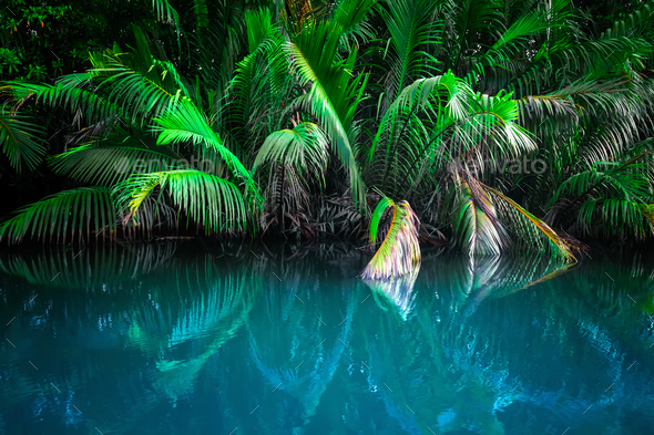 Fantasy landscape of tropical lake - Stock Photo - Images