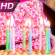 Long-Awaited Birthday - VideoHive Item for Sale