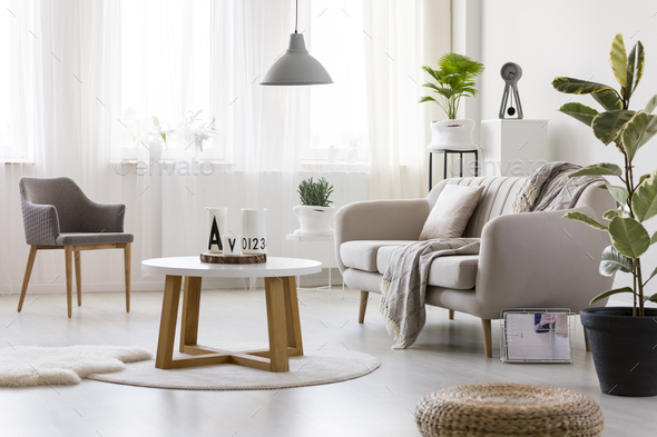 Armchair in cozy living room - Stock Photo - Images