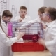 School Children Hold Rabbit in Biology Class - VideoHive Item for Sale