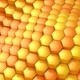 Hexagons Formed A Wave