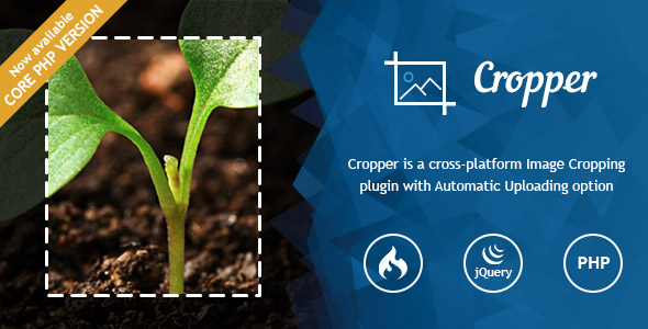 Ultra Image Cropper – Plugin built on CorePHP and CodeIgniter - CodeCanyon Item for Sale