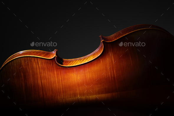Cello back silhouette - Stock Photo - Images