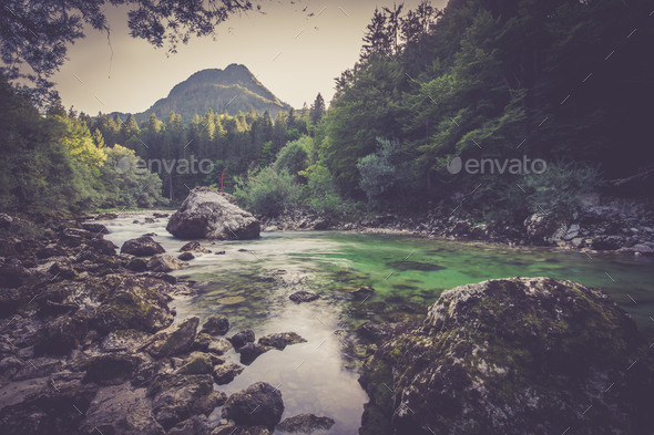 Mountain river in the green forest - Stock Photo - Images