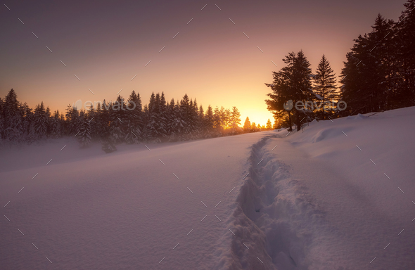 Winter snowy landscape - Stock Photo - Images