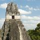 Tikal Jaguar Temple Guatemala - PhotoDune Item for Sale