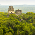 Tikal National Park Guatemala - PhotoDune Item for Sale