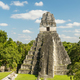 Tikal Jaguar Temple Guatemala - PhotoDune Item for Sale