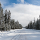 Iced Two Lane Asphalt Road Leads Through Forest Wintertime - PhotoDune Item for Sale