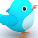 Twitter Pictures - GraphicRiver Item for Sale