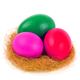 Easter eggs in the nest - PhotoDune Item for Sale