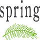 Spring Corp