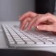 Woman Office Worker Typing on the Keyboard - VideoHive Item for Sale