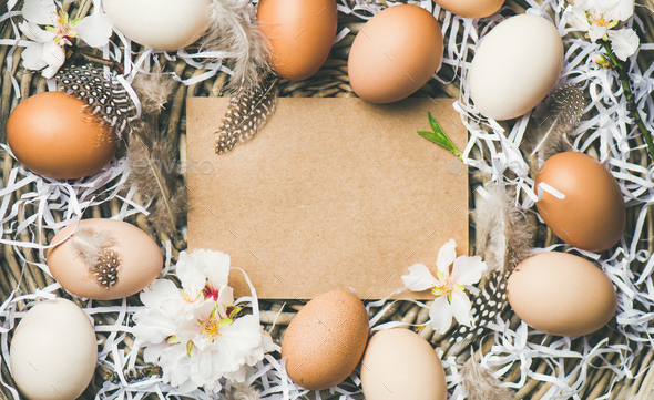 Easter background with eggs, flowers and feathers, copy space - Stock Photo - Images