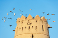 Tower and Pigeons in Al Jahli Fort in Al Ain - PhotoDune Item for Sale