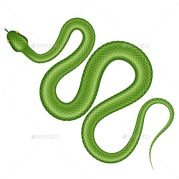 Green Snake - Animals Characters