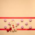 Gingerbread mans smile. - PhotoDune Item for Sale