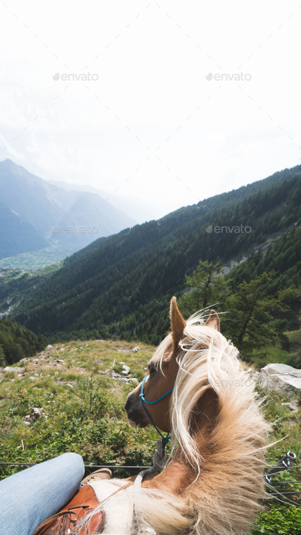POV Horse Trekking in Switzerland - Stock Photo - Images
