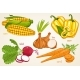 Vegetables Vector Mix - GraphicRiver Item for Sale
