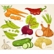 Vegetables Vector Mix. Organic Food, Farm . - GraphicRiver Item for Sale
