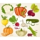 Vegetables Vector Mix