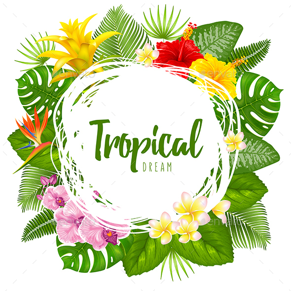 Tropical Summer Background - Flowers & Plants Nature