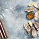 Fresh oysters and white wine - PhotoDune Item for Sale