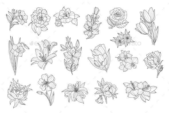 Set of Monochrome Flowers - Flowers & Plants Nature