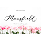 Mansfield - GraphicRiver Item for Sale