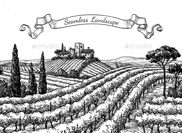 Vineyard Seamless Landscape - Landscapes Nature