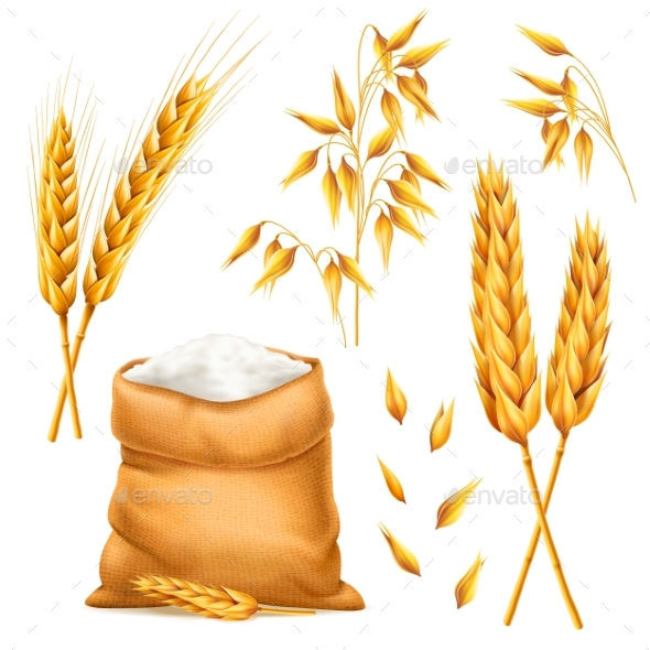 Realistic Bunch of Wheat, Oats or Barley with Bag - Food Objects