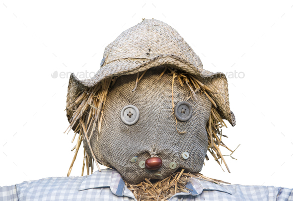 Isolated Scarecrow Head - Stock Photo - Images