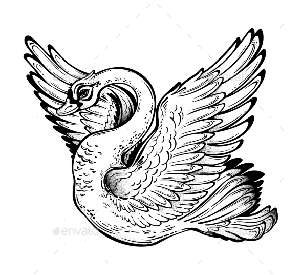Swan Bird with Open Wings. - Animals Logo Templates