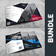 Presentation Folder Bundle - GraphicRiver Item for Sale