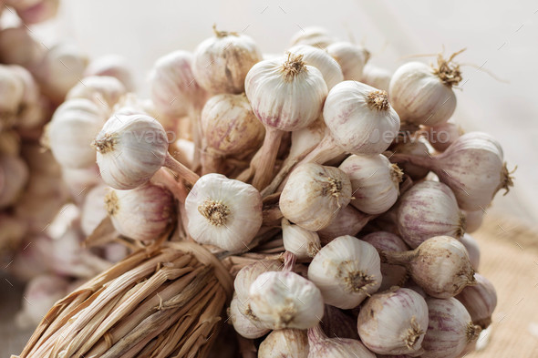 garlic with white background - Stock Photo - Images