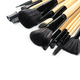 Various professional makeup brushes isolated - PhotoDune Item for Sale