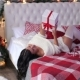Girl Lying on the Bed with a Christmas Gift - VideoHive Item for Sale