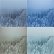 Flying on Clouds and Mist over Snowy Pine Trees Forest - VideoHive Item for Sale