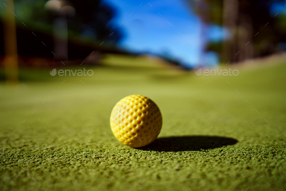 Mini Golf yellow ball on green grass at sunset - Stock Photo - Images